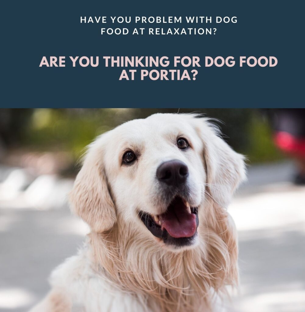 My Time at Portia dog food