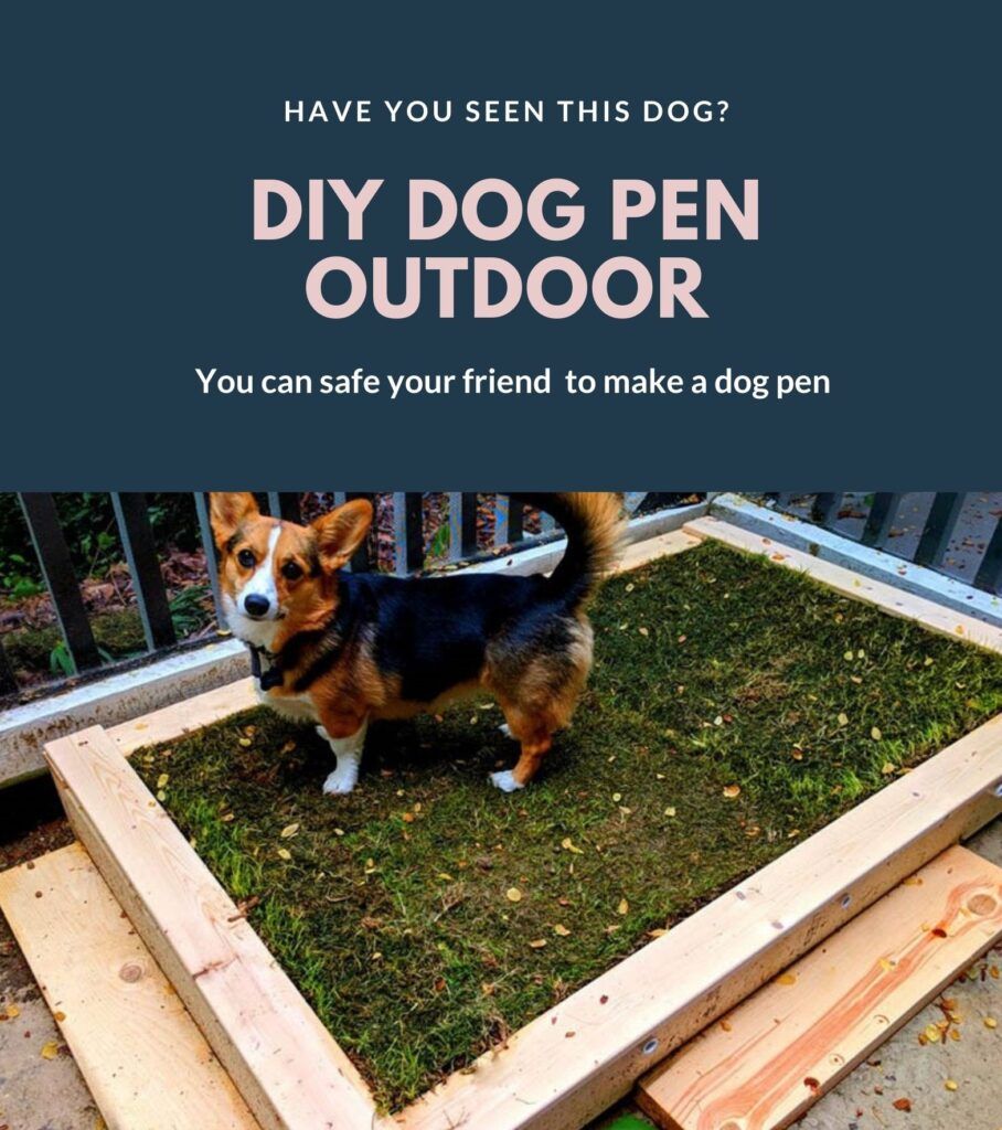 Diy dog pen outdoor