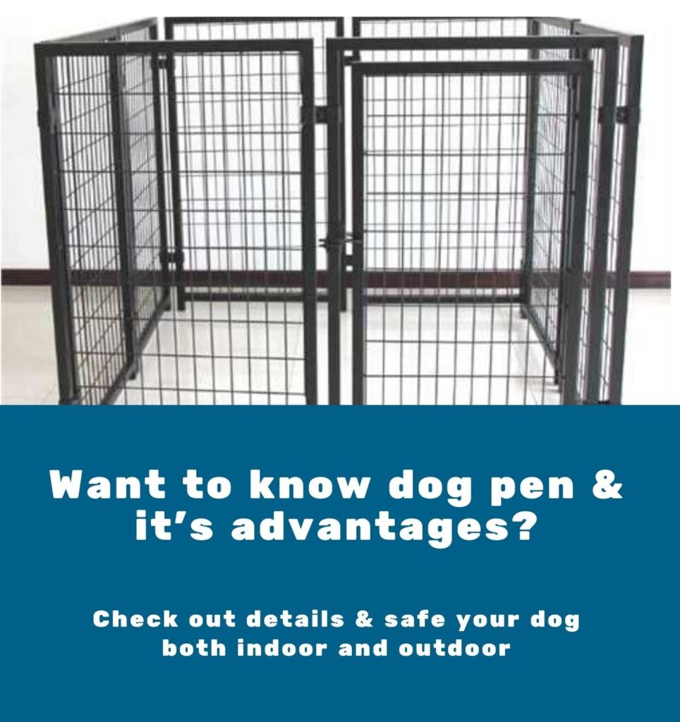 what is the meaning of dog pen