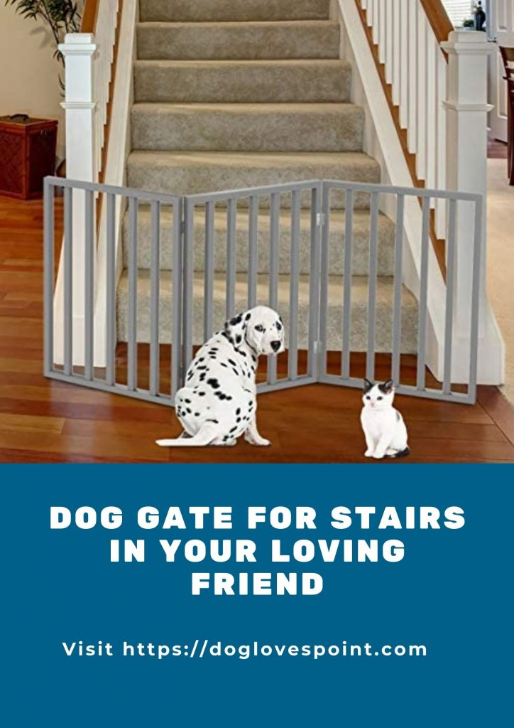 Best Dog Gate For Stairs