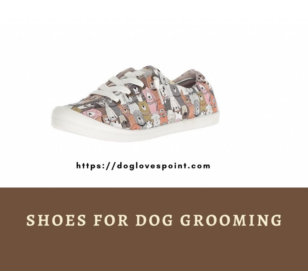 Shoe for dog grooming