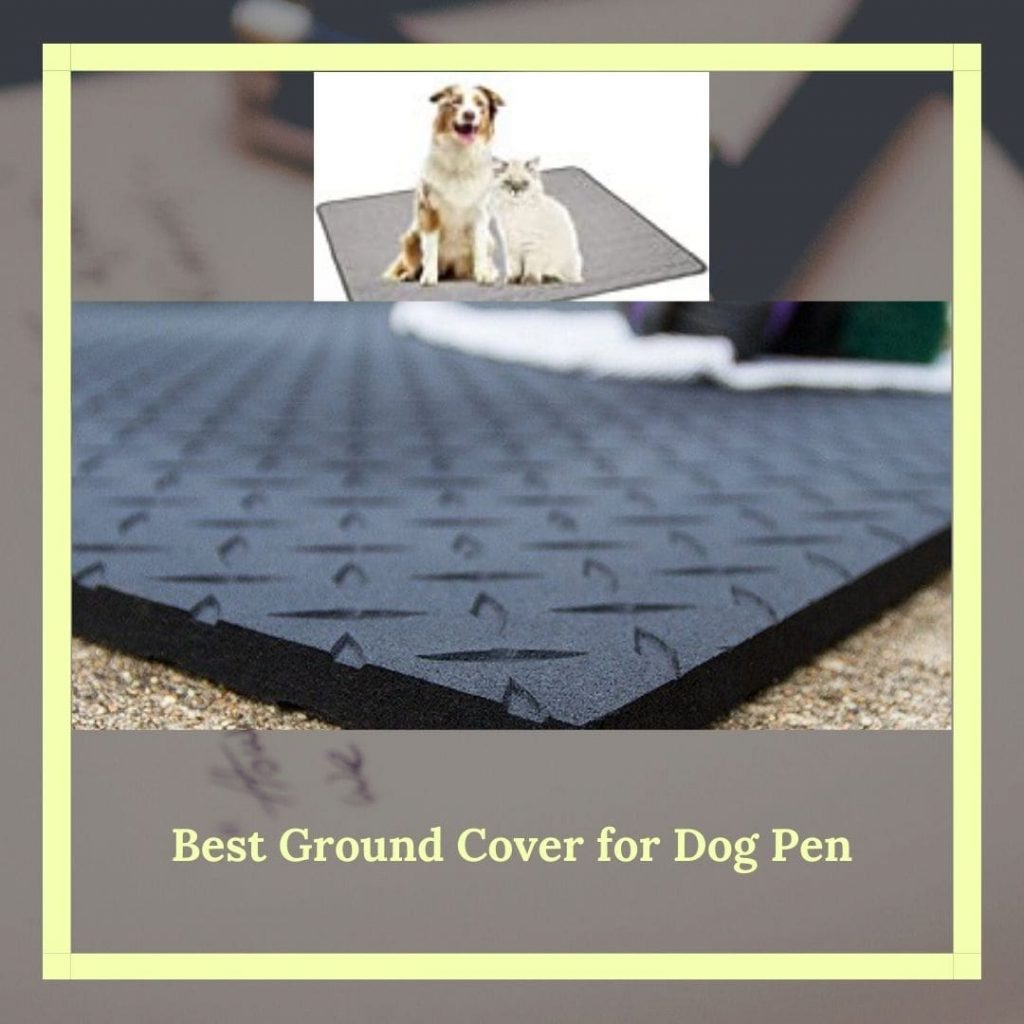 Ground cover for dog pen