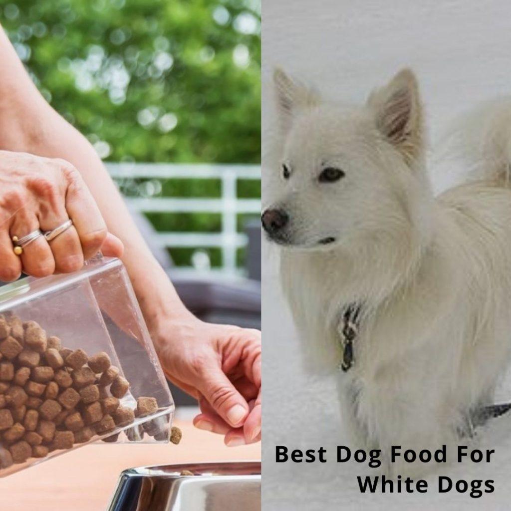 Dog Food For White Dog