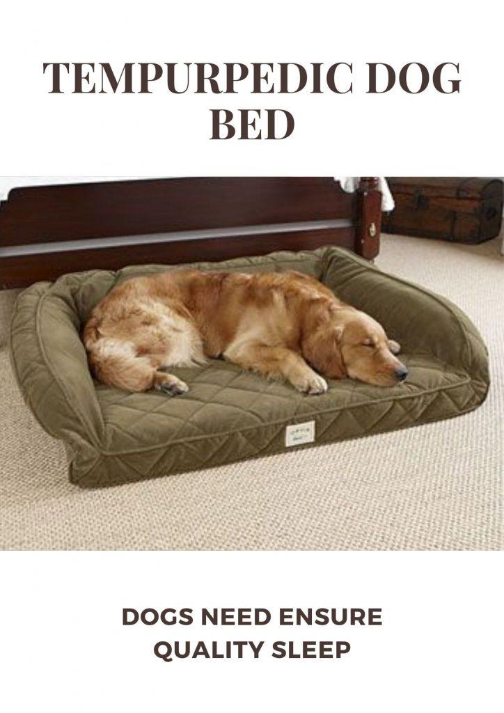 Tempurpedic Dog Bed Reviews