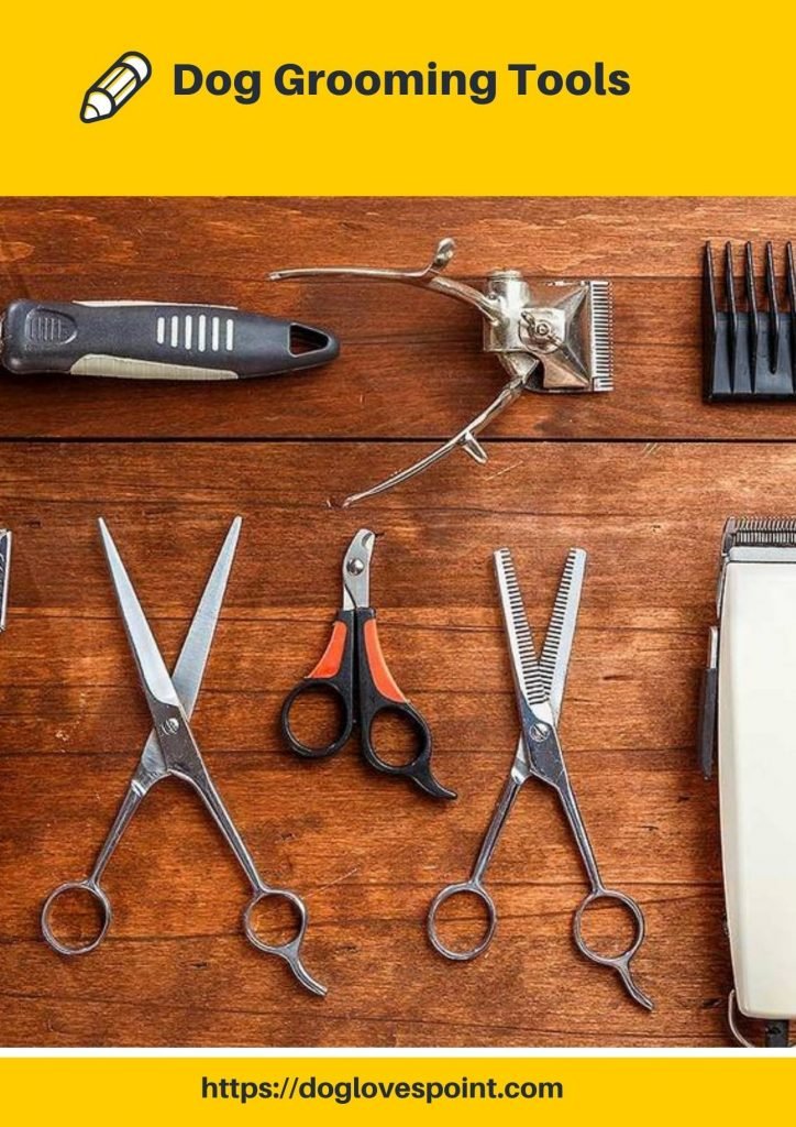 What Tools are Needed for Dog Grooming