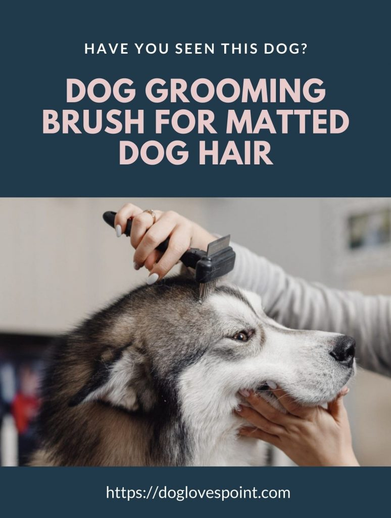 best dog grooming brush for matted dog hair